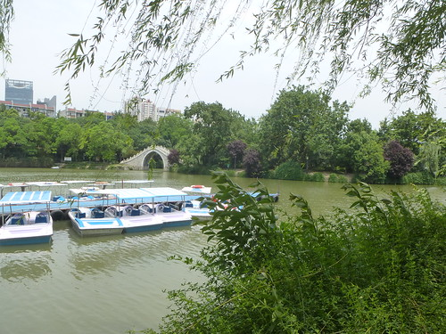 CH-Hefei -Bao Park (5)