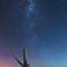 Aurora Chasing by Bruce_Hood