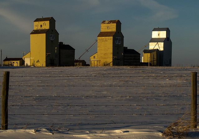 Grain elevators in late afternoon