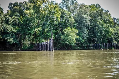 Savannah River Paddling-077