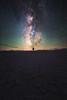 Close Encounter by shainblum