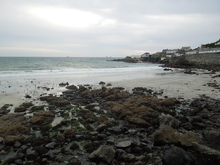 15 10 10 Day 25 1 Coverack