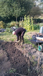 Mark digging spuds