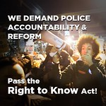 NYers Say: Pass the Right To Know Act!