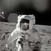 New NASA Study Reveals Origin of Organic Matter in Apollo Lunar Samples by NASA Goddard Photo and Video