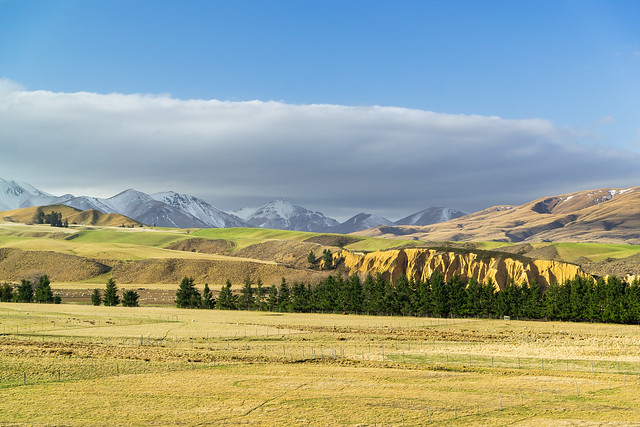 Central Otago Farmland ll
