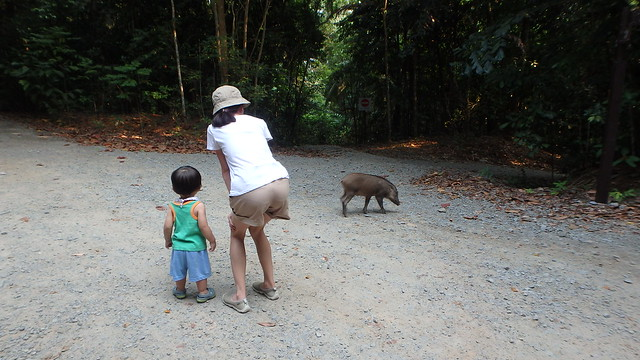Family at Chek Jawa, Pulau Ubin