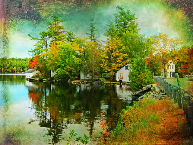 AUTUMN IN MAINE