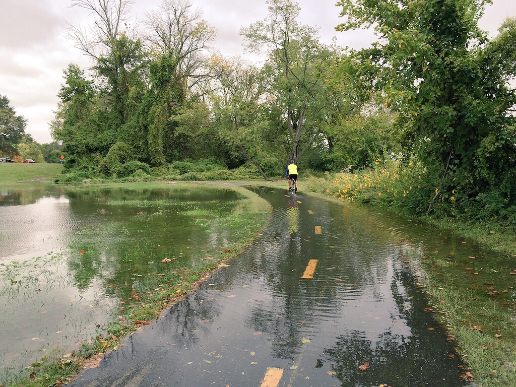 Cyclist navigates flooded Mount Vernon Trail