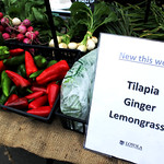 FarmersMarket_Tilapia3