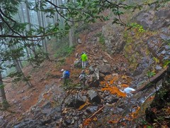 stream(0.0), trail(0.0), landslide(0.0), ridge(0.0), woodland(1.0), soil(1.0), geology(1.0), forest(1.0),