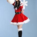 Miss Xmas Costume