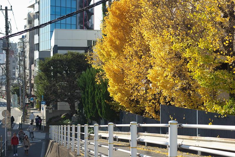 東京路地裏散歩 2015年12月20日