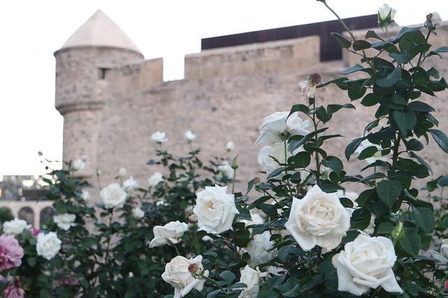 Castillo de la Luz de Las Palmas