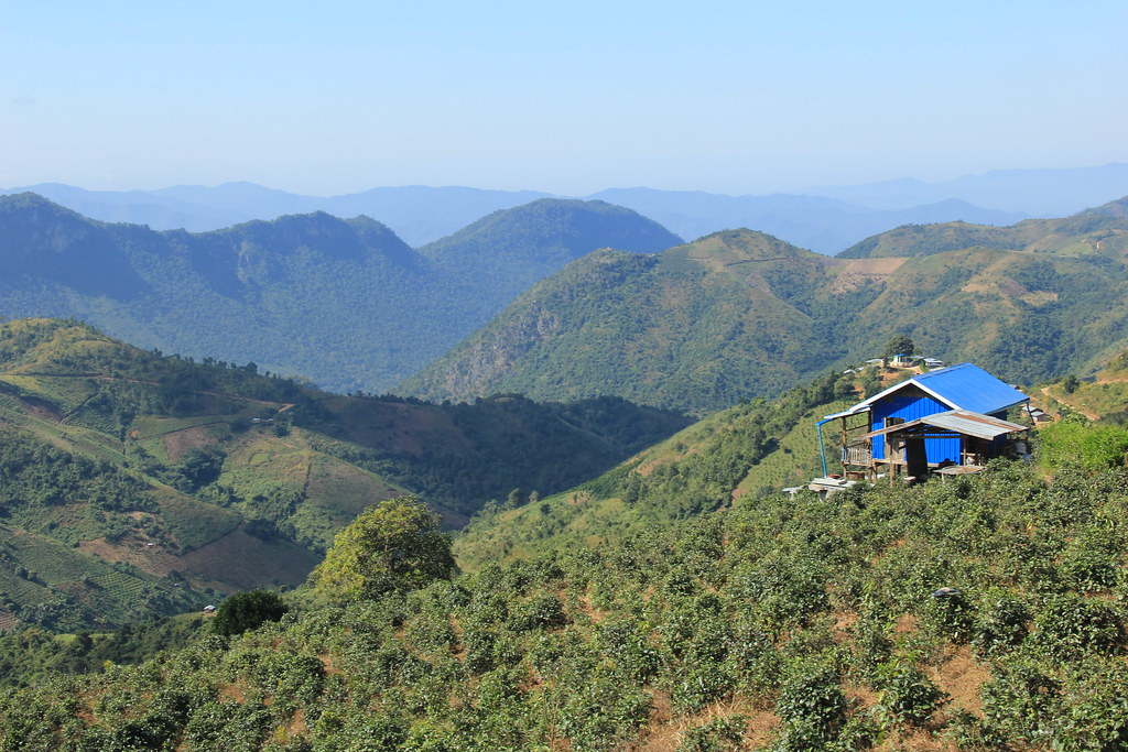 Views from our first lunch stop, Kalaw to Inle Lake trek