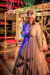 Snowflake Lane Princess
