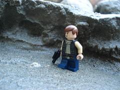 Patroling the canyon.