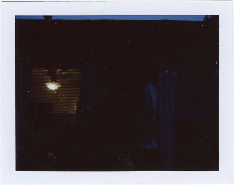 2015.08.30_ polaroid summer _lemon