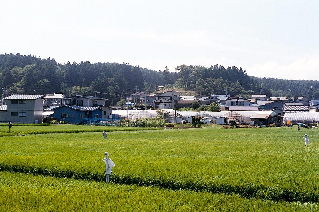"""稻田 稻草人 青い森鐵道 2015/08/09 稻草人  Nikon FM2 / 50mm FUJI X-TRA ISO400  <a href=""""http://blog.toomore.net/2015/08/blog-post.html"""" rel=""""noreferrer nofollow"""">blog.toomore.net/2015/08/blog-post.html</a> Photo by Toomore"""