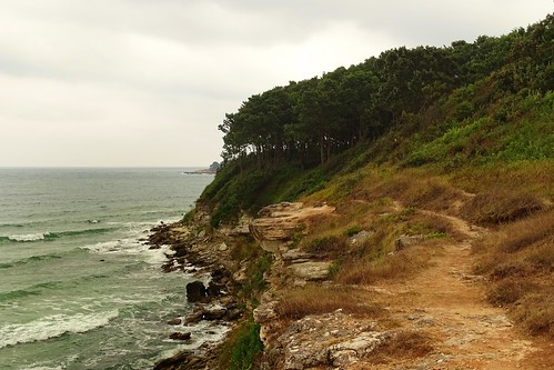 trees sea cliff nature weather forest landscape coast waves view path shore oaks blacksea