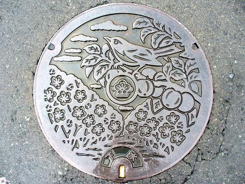 Minabegawa Wakayama, manhole cover (和歌山県南部川村のマンホール)