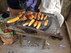 Street Food (Roast Corn)