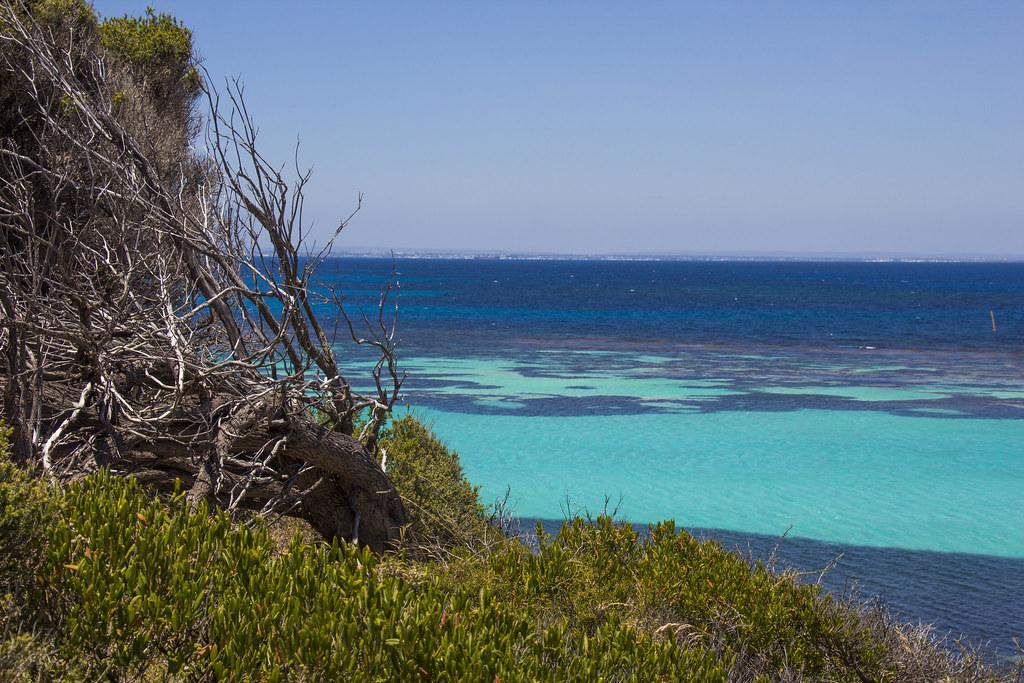 Lækre strande på Rottnest Island, Australien