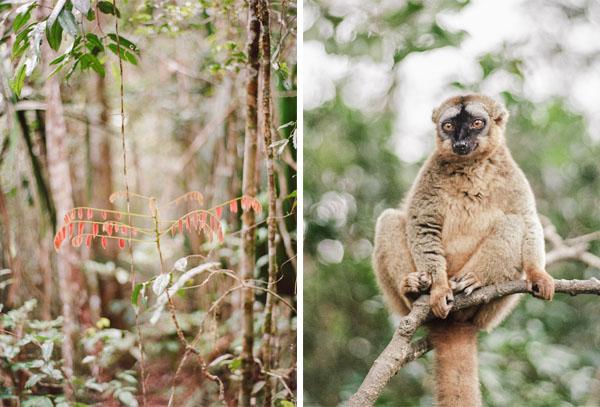 RYALE_Madagascar_Blog1_012