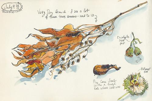 Sketchbook #91: Treasures