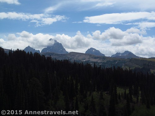 The Tetons from the side of the hill above the Andy Stone Creek Trail, Jedediah Smith Wilderness Area, Wyoming