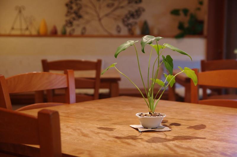 Tea room茶の子