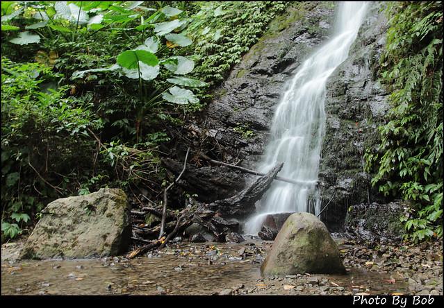 新竹旅遊-馬武督森林062
