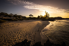 Golden hour on Rottnest Island II