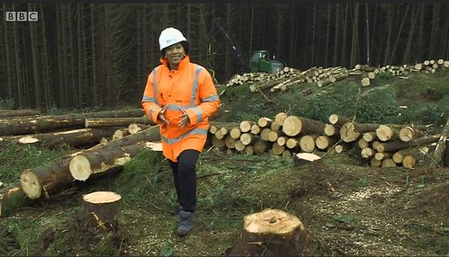 Forestry on the BBC One Show