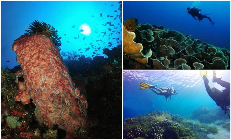 underwater-via-bentenan_cloth