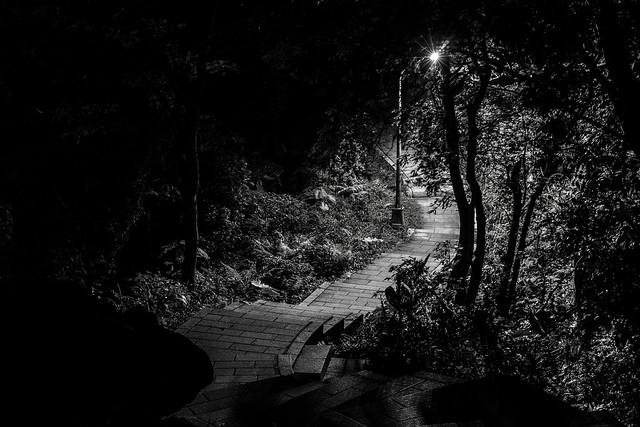Header of A Light In The Dark