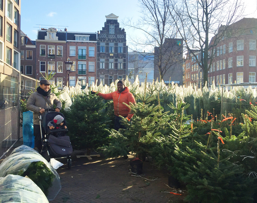 Shopping for Christmas trees at Haarlemmerplein