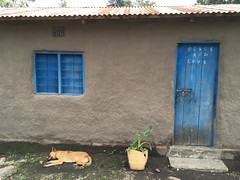 Mamas House