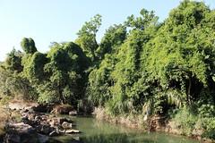 Fluss - river
