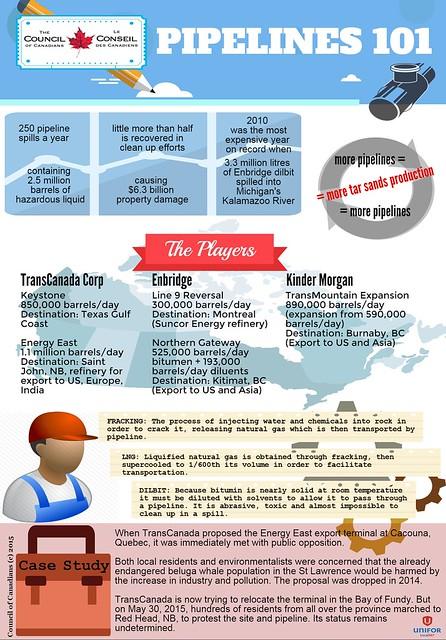 Pipelines 101 infographic