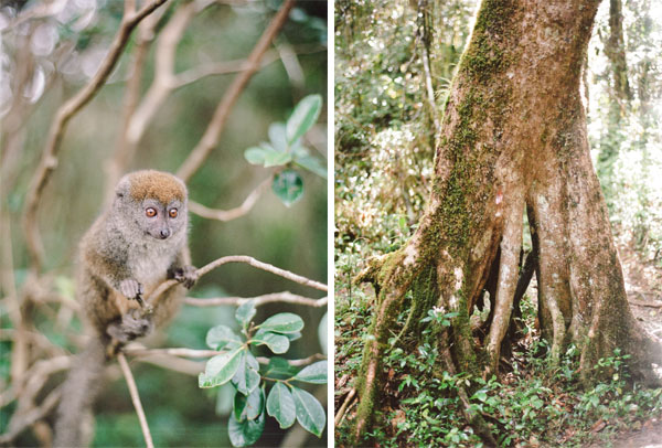 RYALE_Madagascar_Blog2_002