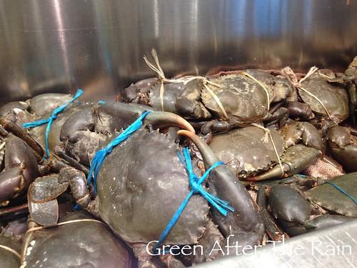 150908c Sydney Seafood Market _59 _TH