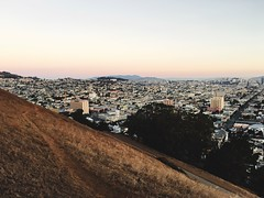 Bernalwood at Bernal Heights Park