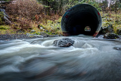 Through the Culvert