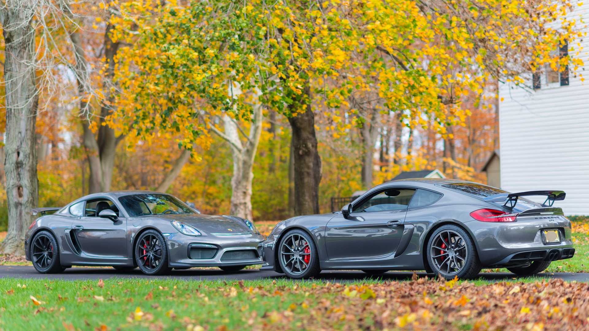 Gt4 Colours Page 78 Boxster Cayman Pistonheads