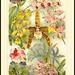4569 Mey6 Meyers Konversations-Lexikon 6. Auflage Neue Zimmerpflanzen by Morton1905