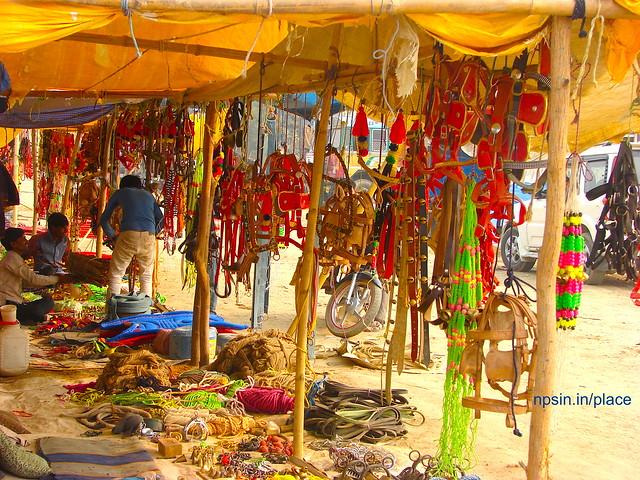 Animal Fair: Colorful Stalls of Animal Utilities