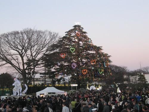 中山競馬場のクリスマスツリーとイルミネーション
