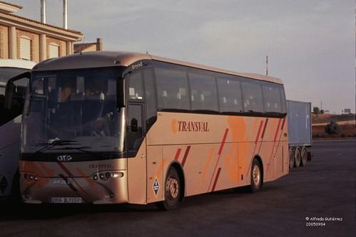 Transval Man 18460 Ovi Royal (34fi)