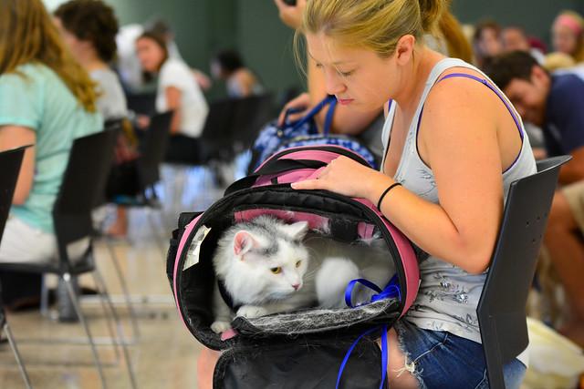 Pet Commencement 2015